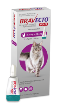 Bravecto PLUS for Cats Large